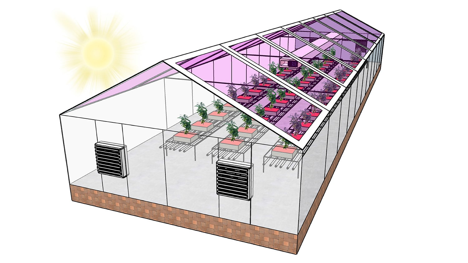 Next Generation of Greenhouses May Be Fully Solar Powered